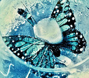Butterfly. Artificial  blue butterfly captured in ice cube Royalty Free Stock Photo