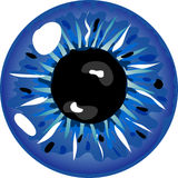 Blue pupil Royalty Free Stock Photo