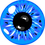 Blue pupil Stock Photos