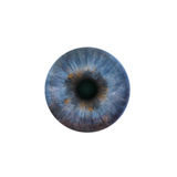 Blue pupil of the human eye. On a white background stock photography