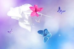 Blue and purple butterflies in flight against a background of wild tropical flowers in pink tones. Artistic image background. Soft stock photos