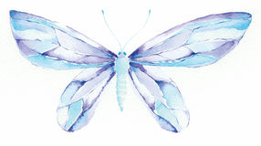 Blue and purple fantasy butter. Watercolor painting of a blue and purple fantasy butterfly Stock Photography