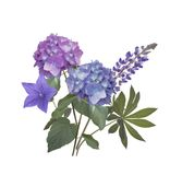 Blue and purple flowers. Arrangement isolated on white background Stock Photography