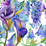 Blue and purple flowers Royalty Free Stock Photos