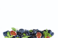 Blue and purple food. Group of fresh fruits and berries with basil`s on a white background. royalty free stock photos
