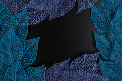 Blue and purple leaf frame. Blue and purple leaves forming an abstract frame over black background Stock Photos