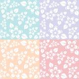 Blue purple pink and yellow flora sakura pattern color pastel tone Stock Image