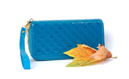 Blue Purse Stock Image