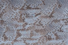 Blue python snake skin with scales and texture royalty free illustration