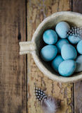 Blue Quail Easter eggs and feathers Stock Photos