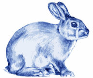 Blue rabbit. Gentle blue rabbit from of a picture book Royalty Free Stock Image