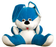 Blue rabbit toy is sitting Royalty Free Stock Images