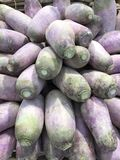 Blue radish. For sale and  on display at a supermarket Royalty Free Stock Image