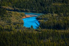 Blue rapid river. Flows through the wild area with coniferous forest. Altai Republic, Russia stock photography