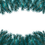 Blue, realistic fir branches. Fir branches with the top and bottom of the picture. Isolated on white background Stock Images