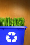 Blue recycle bin with grass inside Stock Image