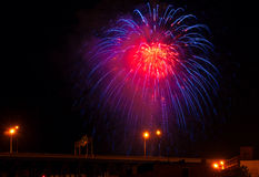 Blue red firework Royalty Free Stock Image