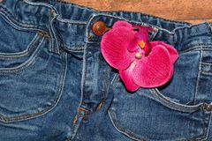 Blue, Red, Pink, Jeans Stock Photography