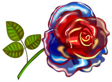 Blue-red rose Royalty Free Stock Image