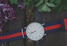 Blue and Red Strap Silver Round Analog Watch Beside Purple and Green Leaf Plant Stock Photo