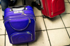 Blue and Red Suitcases. Two small rolling suitcases in blue and red royalty free stock photo
