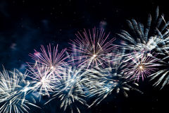 Blue red yellow firework Royalty Free Stock Image