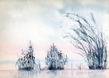 Blue Reeds. A watercolor painting of reeds in a lake Stock Image