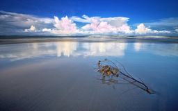 Blue reflection Stock Images