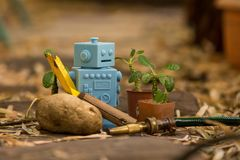 Blue Retro robot toys in Natural background Royalty Free Stock Photo