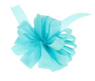 Blue ribbon bow isolated Stock Images