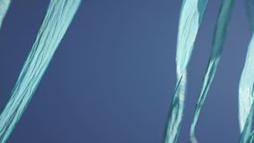 Blue ribbon flags stock footage