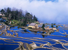 Blue Rice Terraces Of Yuanyang Royalty Free Stock Images