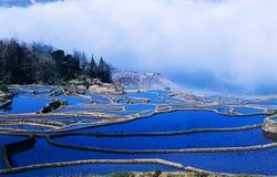 Blue rice terraces of yuanyang. Ancient rice terraces panorama   of yuanyang, yunnan, china Royalty Free Stock Photo