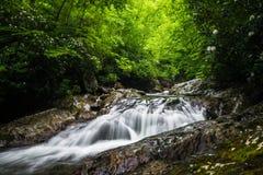 Blue Ridge Mountain Stream 2 Royalty Free Stock Photo
