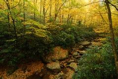 Blue Ridge Mountain Yellow Autumn Creek WNC Stock Photography