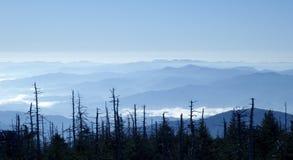 Blue Ridge Mountains royalty free stock photo