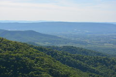 Blue Ridge Mountains in Summer. Royalty Free Stock Photo