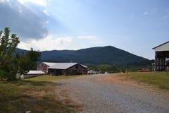 Blue Ridge Mountains tło przy Jabłczanym sadem zdjęcia royalty free