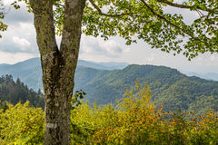 Blue Ridge Mountains. View of the Blue Ridge Mountains in North Carolina from the Appalachian Trail Stock Image