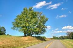 Blue Ridge Parkway Stock Photos