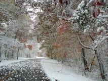 Blue Ridge Parkway Royalty Free Stock Photos