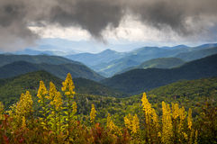 Blue Ridge Parkway NC Photography North Carolina Scenic. Landscape featuring goldenrod in bloom at the start of autumn in the Appalachian Mountains Stock Photos