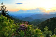 Blue Ridge Parkway And Rhodoendron Royalty Free Stock Photos