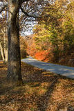 Blue Ridge Parkway Roadway in Northern Virginia, USA Royalty Free Stock Photography