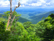 Blue Ridge Parkway view. A view from Blue Ridge Parkway in North Carolina Stock Photos