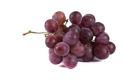 Blue ripe bunch of grapes Royalty Free Stock Images