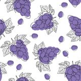 Blue ripe grape berries, seamless pattern isolated on white background. vector illustration