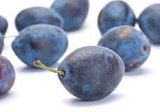 Blue ripe plum Royalty Free Stock Image