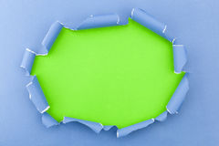 Blue ripped open paper on green paper background. Stock Photo