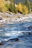 Blue river Stock Photos